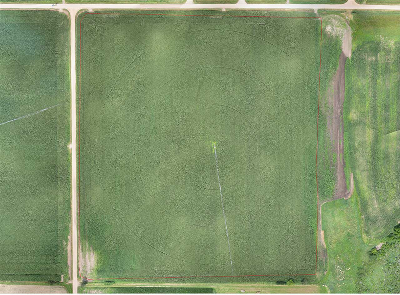 Agriculture Drone Crop Yield Analysis senseFly
